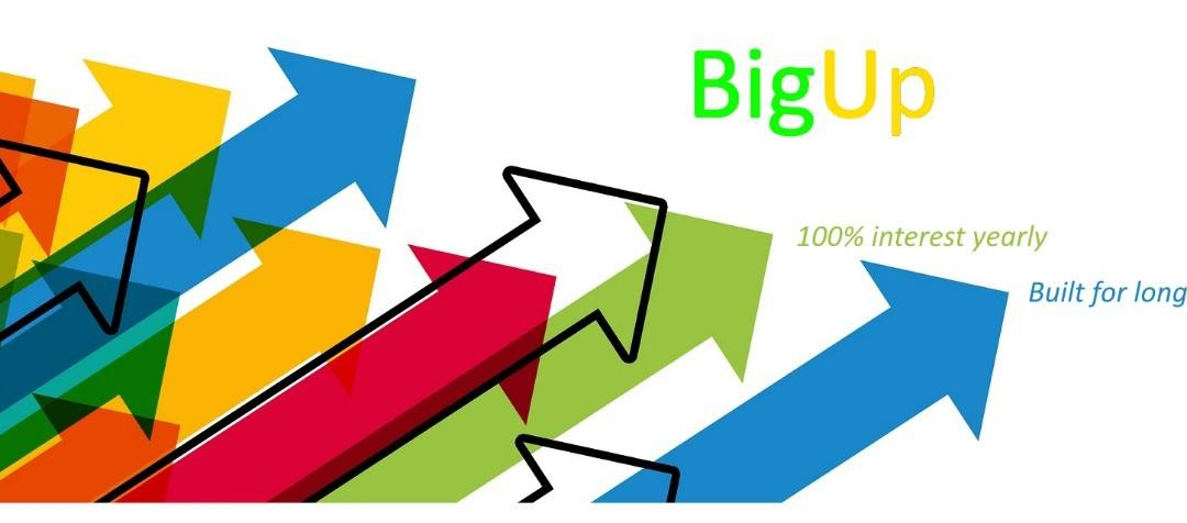 New Cryptocurrency, BigUp Gets Bigger