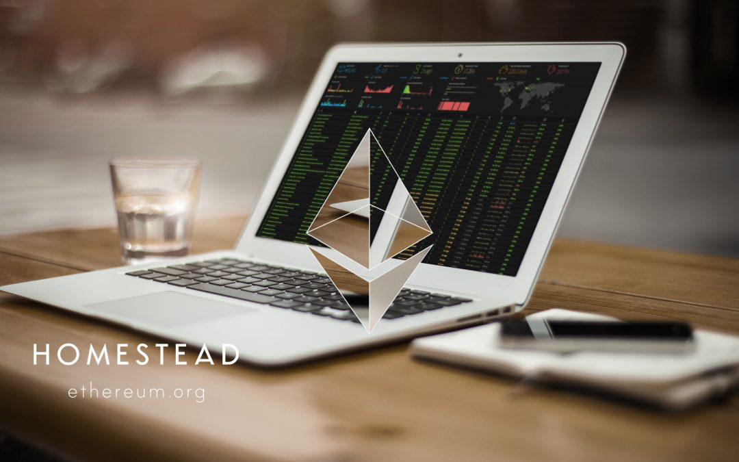 The DAO Push Ethereum Mining Profitability to the Moon